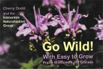 gowildcover